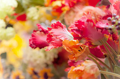 Photograph - Parrot Tulips. Amstedam Flower Market by Jenny Rainbow