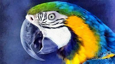 Ravishing Digital Art - Parrot by Vincent Monozlay