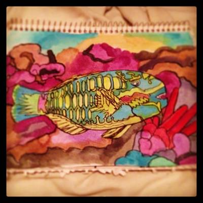 Parrotfish Painting - Parrotfish by Jessie Meredith