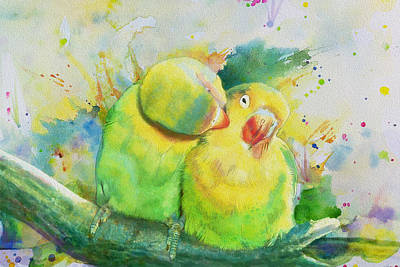 Parakeet Painting - Parrots by Catf