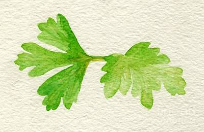 Painting - Parsley by Annemeet Hasidi- van der Leij