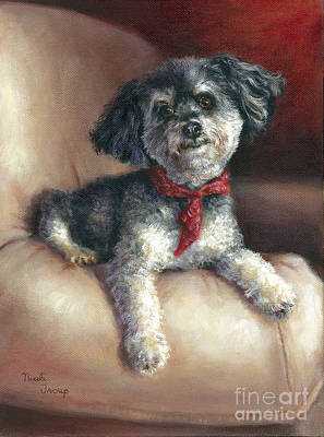 Dog And Toy Painting - Parti Poodle by Nicole Troup