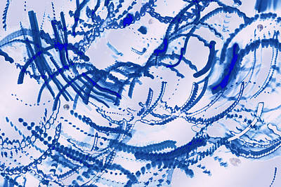 World Of Thought Photograph - Particles Of Blue by Kellice Swaggerty