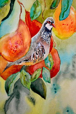 Pear Tree Painting - Partridge In A Pear Tree by Beverley Harper Tinsley