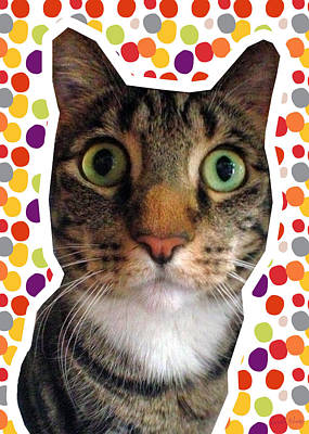 Eyes Mixed Media - Party Animal- Cat With Confetti by Linda Woods