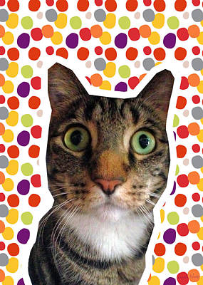 Eyes Mixed Media - Party Animal - Smaller Cat With Confetti by Linda Woods