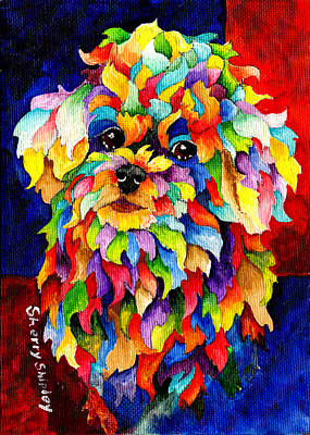 Animal Painting - Party Poodle by Sherry Shipley