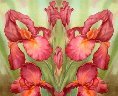 Pas De Deux Des Iris Art Print