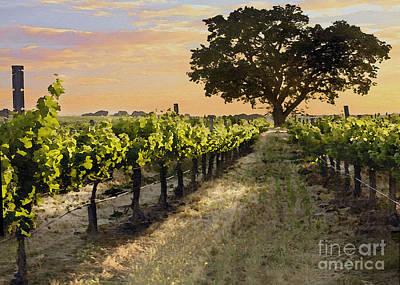 Grape Digital Art - Paso Vineyard  by Sharon Foster