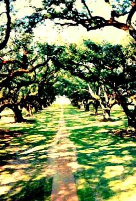 Print featuring the photograph Passage Through The Shadows At Oak Alley by Michael Hoard