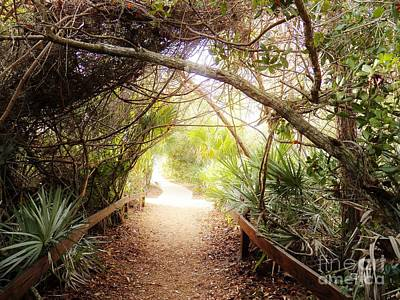 Photograph - Passageway by Judy Via-Wolff