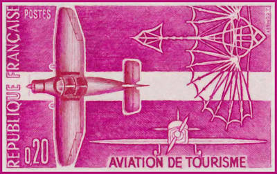 Passenger Plane Painting - Passenger Plane by Lanjee Chee
