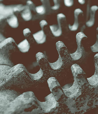 Passing Gears Art Print by Steven Milner