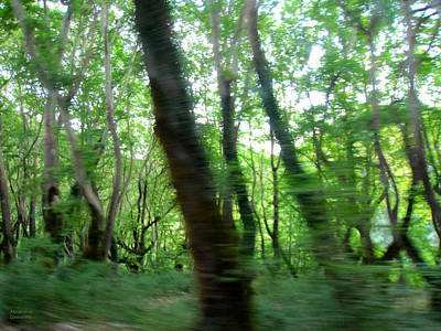 Photograph - Passing The Forest by Alexandros Daskalakis