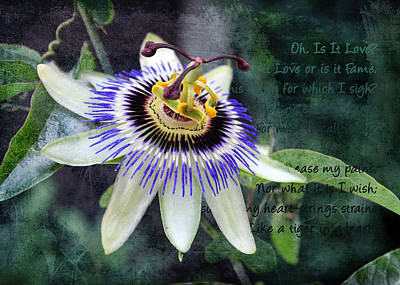 Digital Art - Passion Flower 1 by Helene U Taylor