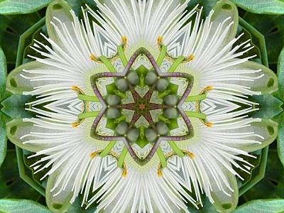 Digital Art - Passion Flower Mandala by Diane Lynn Hix