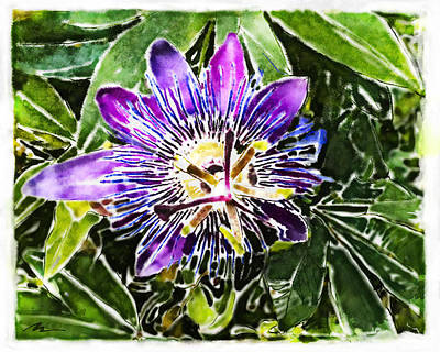 Painting - Passion Fruit Flower by Nato  Gomes