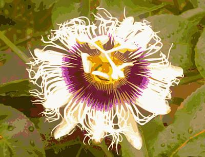 Passionfruit Digital Art - Passion Fruit Flower by Ricardo  De Almeida