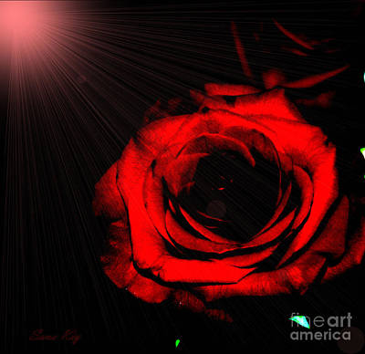 Photograph - Passion. Red Rose by Oksana Semenchenko