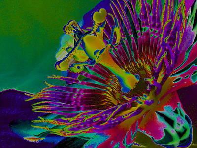 Passion Art Print by Rebecca Flaig