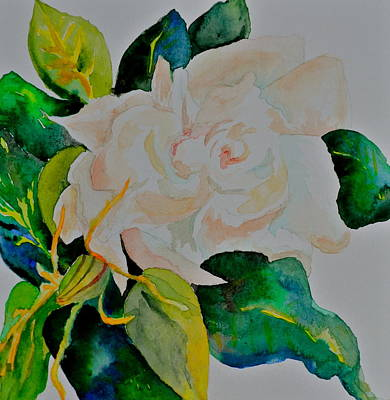 Art Print featuring the painting Passionate Gardenia by Beverley Harper Tinsley