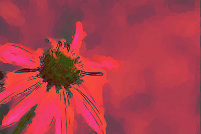 Gaugin Rights Managed Images - Passionate Pink Royalty-Free Image by Karol Livote
