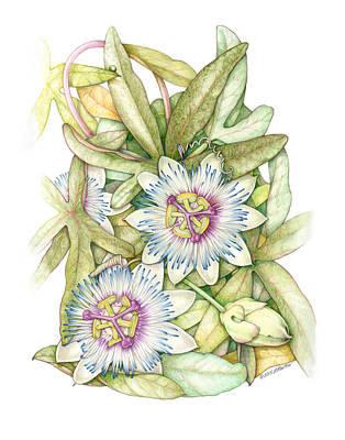 Passionflower Art Print by Elizabeth Martin