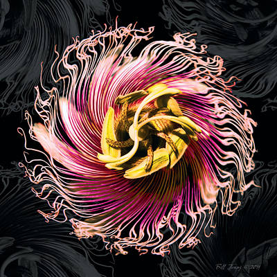 Passionfruit With A Twist Art Print by Bill Jonas