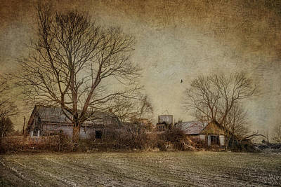 Cornfield Photograph - Past Prime by Robin-Lee Vieira