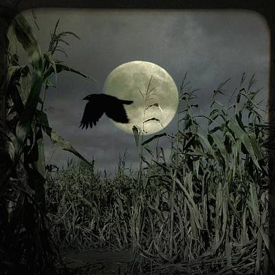 Gothicrow Photograph - Fly Past The Full Moon by Gothicrow Images