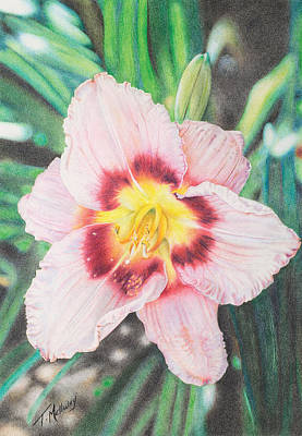 Painting - Pastel Daylily by Terry Mellway
