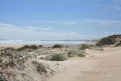 Photograph - Pastel Dunes by Elaine Teague