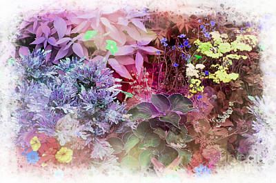 Photograph - Pastel Flower Bed by Linda Rae Cuthbertson