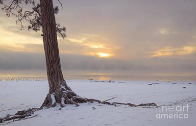 Photograph - Pastel Mood by Idaho Scenic Images Linda Lantzy