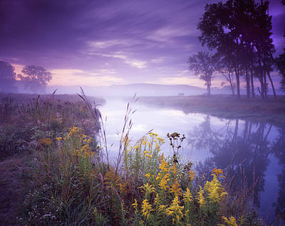 Pastel Morning Art Print by Ray Mathis