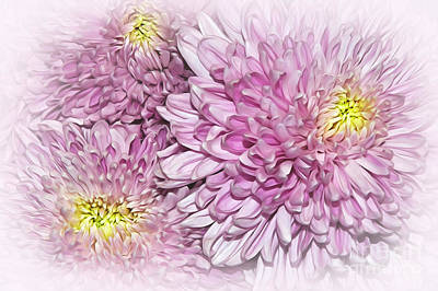 Floral Digital Art Digital Art - Pastel Pink Mums by Kaye Menner