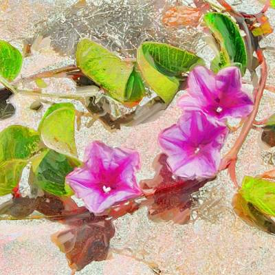 Painting - Pastel Purple Beach Vine - Square by Lyn Voytershark