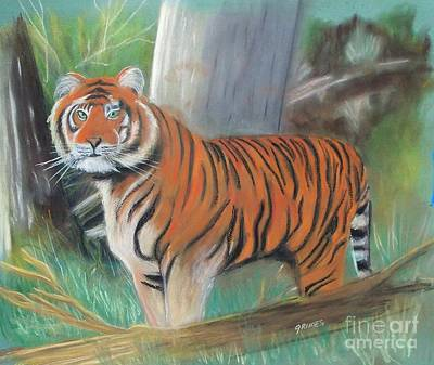 Painting - Pastel Tiger by Carol Grimes