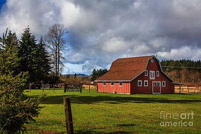 Art Print featuring the photograph Pasture For Rent by Jean OKeeffe Macro Abundance Art