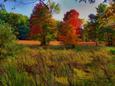 Pasture Gone Fallow Art Print