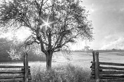 Apple Photograph - Pastures In Black And White by Debra and Dave Vanderlaan