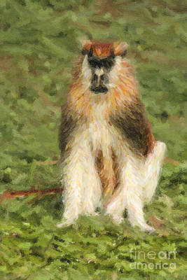 African Wildlife Digital Art - Patas Monkey Erythrocebus Patas  by Liz Leyden