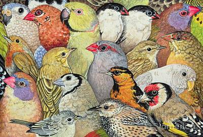 Finch Painting - Patchwork Birds by Ditz