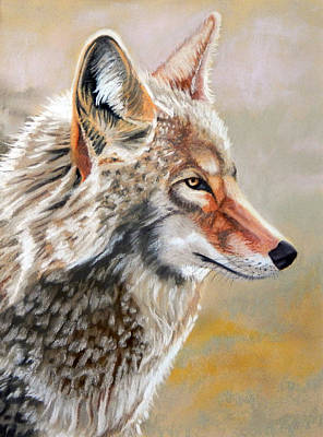 Patchwork Coyote Art Print by Tanya Provines