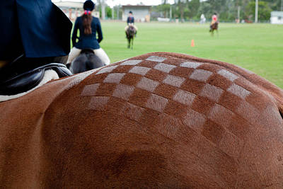 Photograph - Patchwork Horses Rump by Carole Hinding