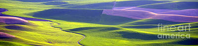 Photograph - Patchwork Pano by Idaho Scenic Images Linda Lantzy