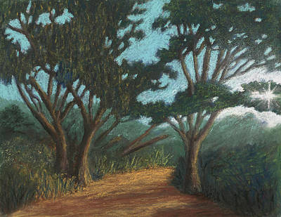Pastel - Path By Lake Murray 01 by Michael Heikkinen