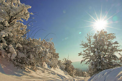 Photograph - Path Covered With Snow In A Sunny Winter Day by Vlad Baciu