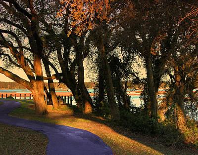 Photograph - Path by Joseph Tese