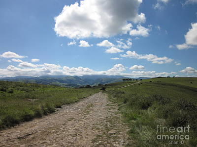 Photograph - Path Near Ostabat by Chani Demuijlder
